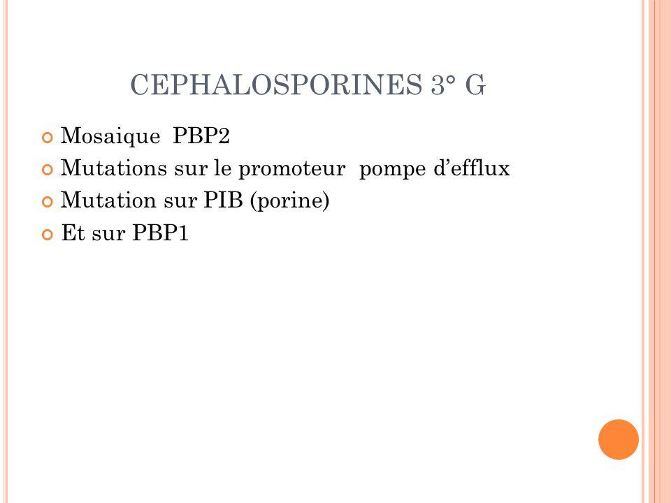 CEPHALOSPORINES 3° G Mosaique PBP2 Mutations sur le promoteur pompe defflux Mutation sur PIB (porine) Et sur PBP1