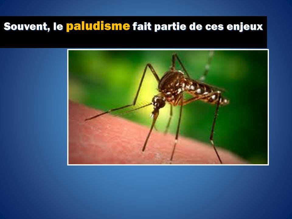 Souvent, le fait partie de ces enjeux Souvent, le paludisme fait partie de ces enjeux