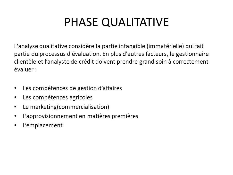 PHASE QUALITATIVE L'analyse qualitative considère la partie intangible (immatérielle) qui fait partie du processus d'évaluation. En plus d'autres fact