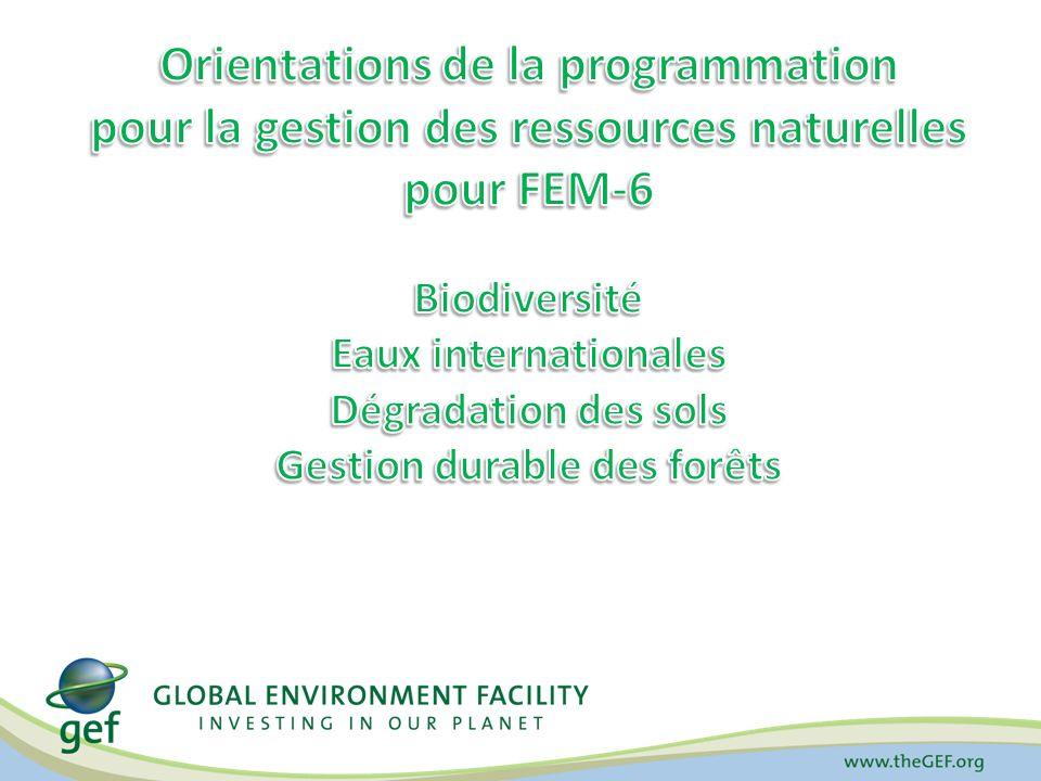 Stratégie pour la gestion durable des forêts pendant FEM-6 But : Obtenir des effets positifs multiples au plan environnemental, social et économique par lamélioration de la gestion des forêts de tous types et des arbres hors forêt.
