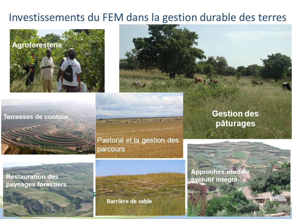 Investissements du FEM dans la gestion durable des terres Barrière de sable Terrasses de contour Restauration des paysages forestiers Pastoral et la g