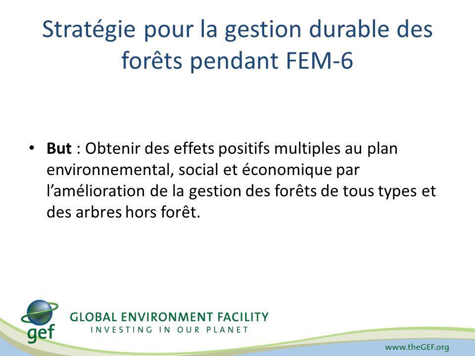 Stratégie pour la gestion durable des forêts pendant FEM-6 But : Obtenir des effets positifs multiples au plan environnemental, social et économique p