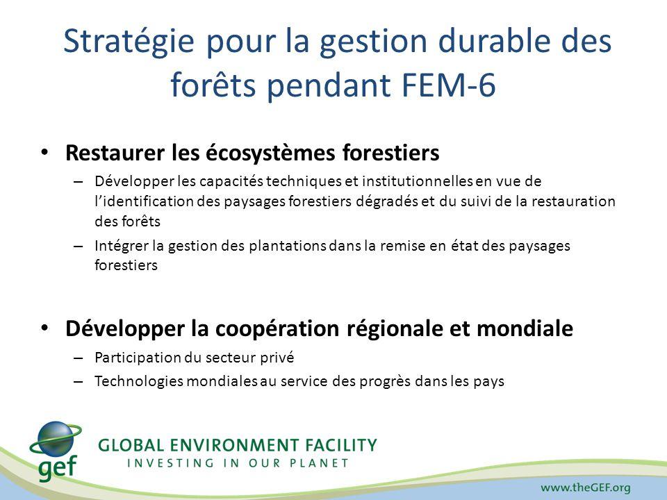 Stratégie pour la gestion durable des forêts pendant FEM-6 Restaurer les écosystèmes forestiers – Développer les capacités techniques et institutionne