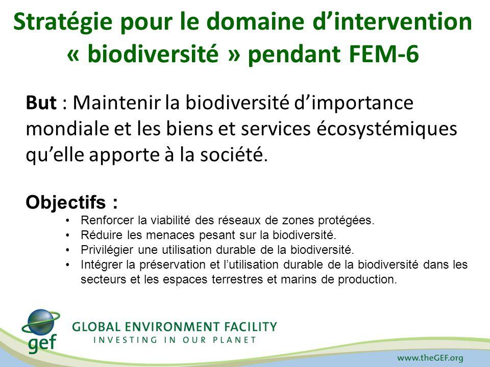 Stratégie de gestion durable des forêts pour FEM-6 : Objectifs et programmes Maintenir les ressources forestières – Planification intégrée de lutilisation des terres – Identification et suivi des forêts à haute valeur de conservation – Identification et suivi de la disparition des forêts Développer la gestion forestière – Élaborer et appliquer des projets modèles de rémunération des services écologiques – Développement des capacités des communautés locales en vue de la gestion durable des forêts – Appuyer les mécanismes de financement durable en vue de la gestion durable des forêts