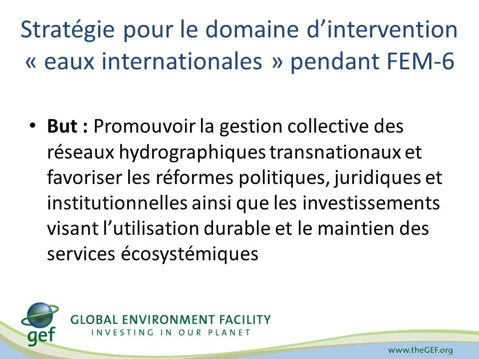 Stratégie pour le domaine dintervention « eaux internationales » pendant FEM-6 But : Promouvoir la gestion collective des réseaux hydrographiques tran