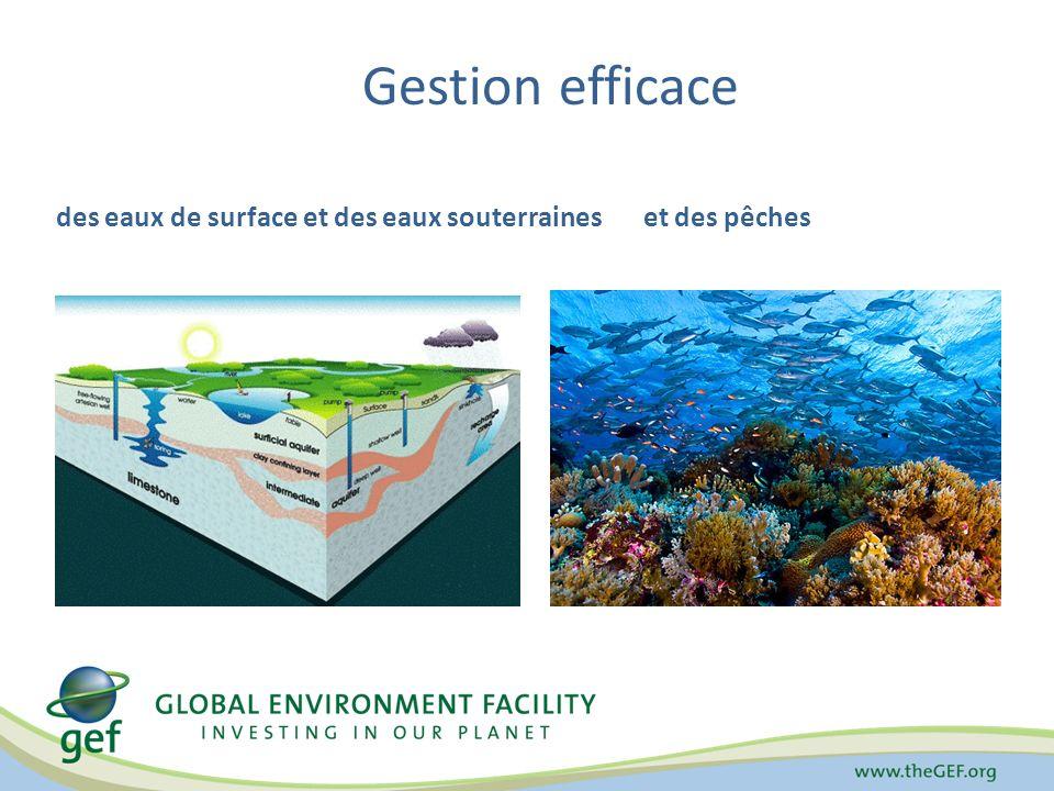 Gestion efficace des eaux de surface et des eaux souterraineset des pêches