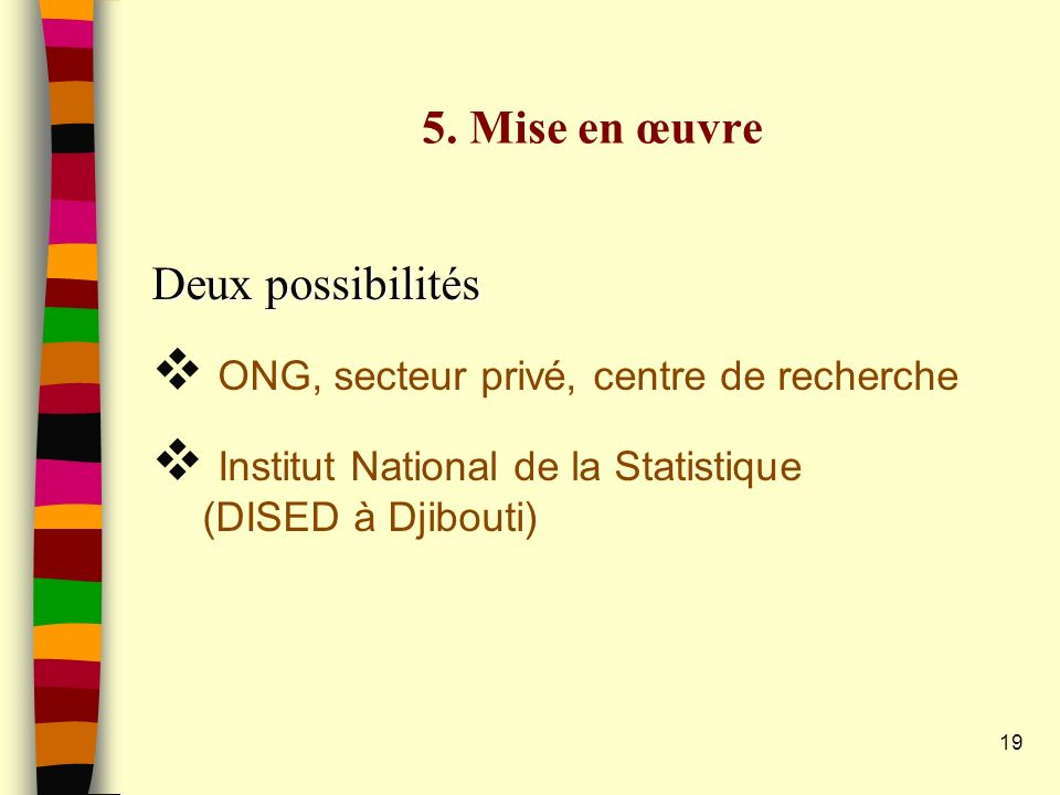 19 5. Mise en œuvre Deux possibilités ONG, secteur privé, centre de recherche Institut National de la Statistique (DISED à Djibouti)