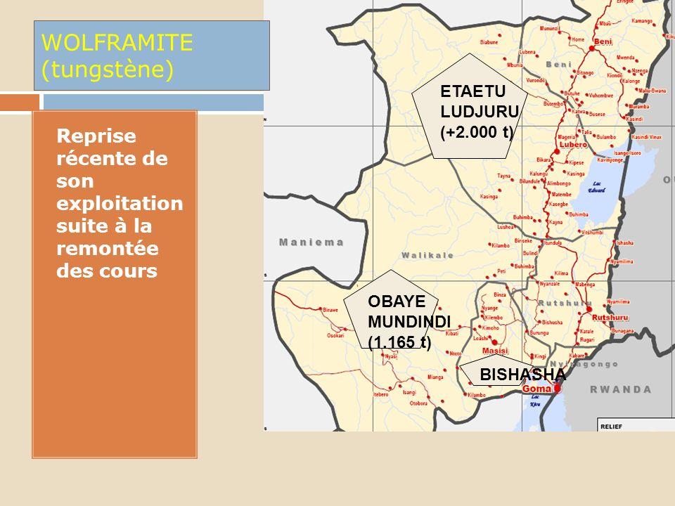 1. - Minerai provenant essentielle- ment de Masisi, Lubero et Walikake - Exploitation semi industrielle à Bibatama (Masisi) par MHI BIBATAMA ETAETU LU