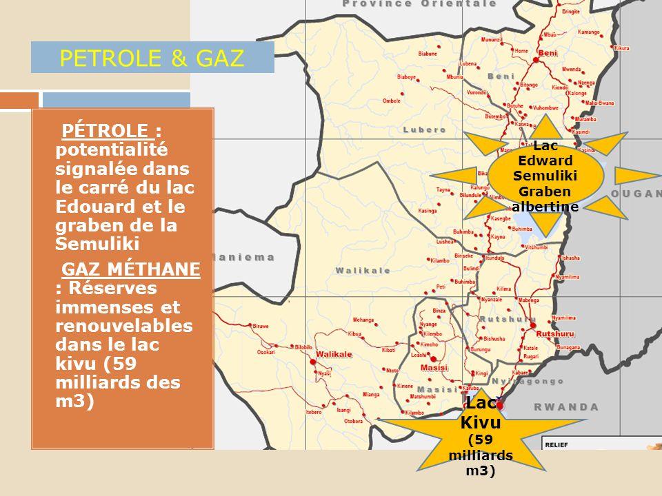 OR 1. Exploité un peu partout en artisanal NB: Recherches par LONCOR Ressources dans la région de Manguredjip a suspendues depuis mai 2012 pour cas de