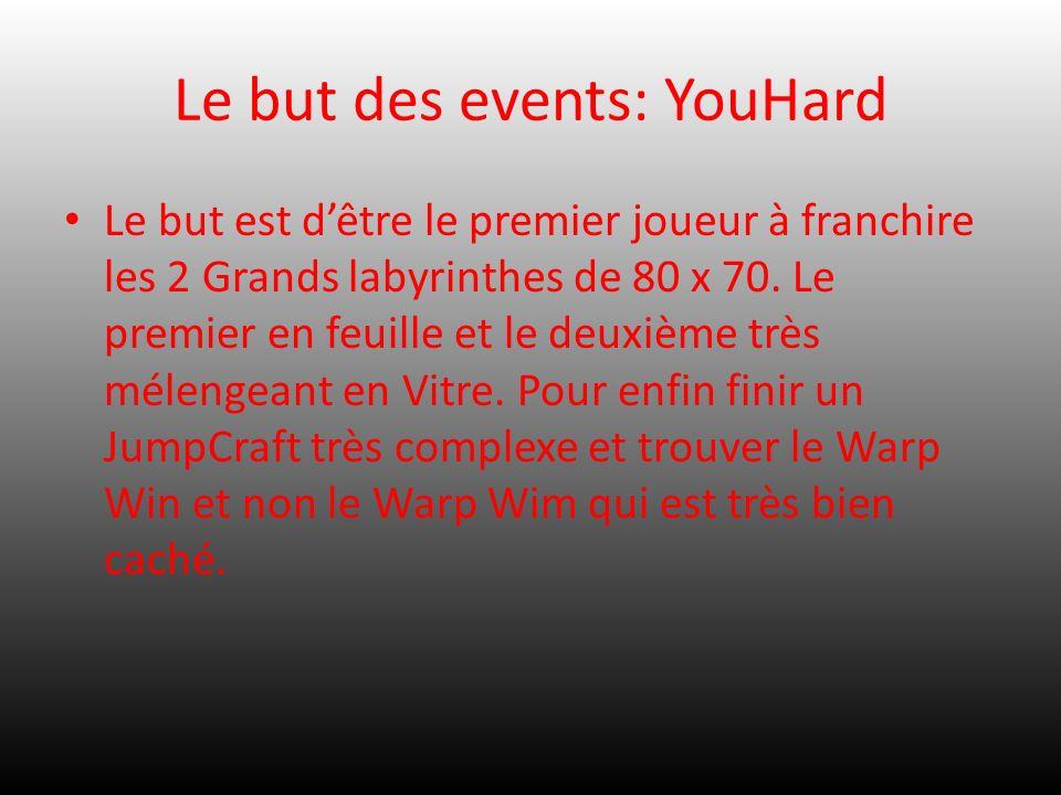 Le but des events: YouHard Le but est dêtre le premier joueur à franchire les 2 Grands labyrinthes de 80 x 70. Le premier en feuille et le deuxième tr