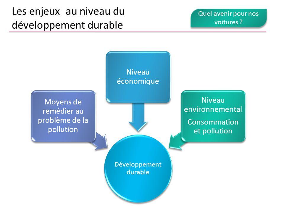 Les enjeux au niveau du développement durable Développement durable Moyens de remédier au problème de la pollution Niveau économique Niveau environnem