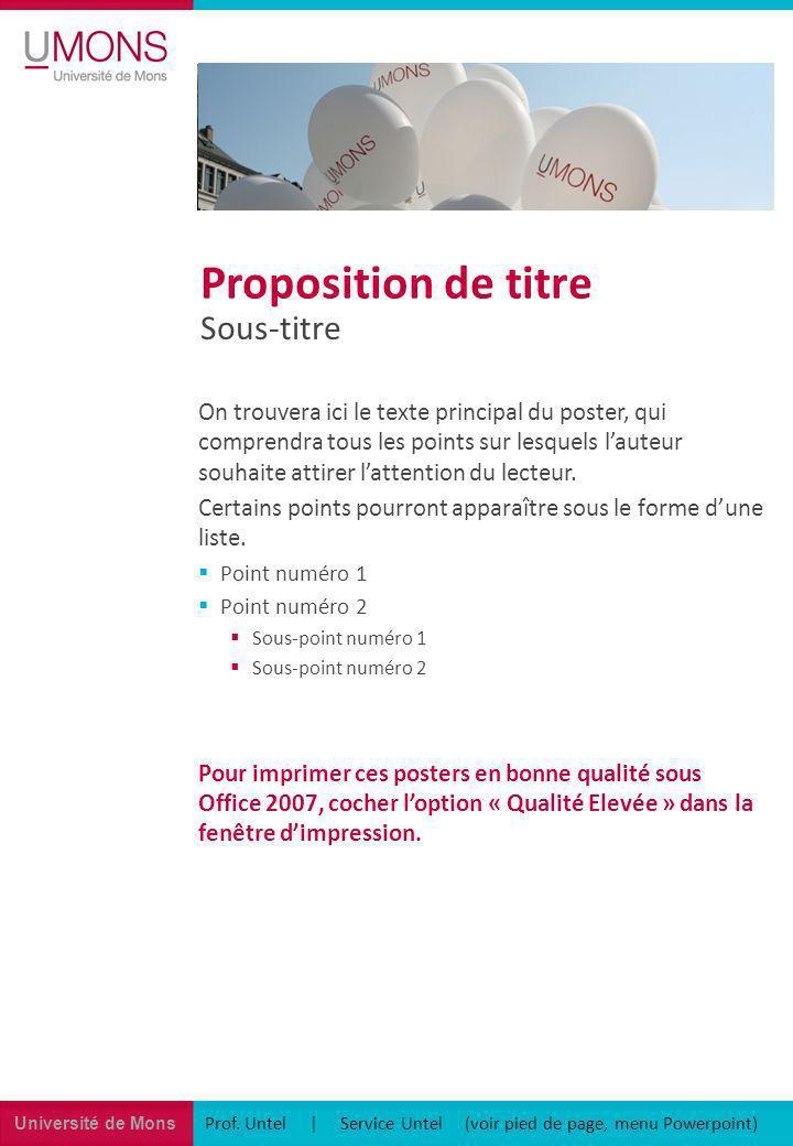 Université de Mons Prof. Untel | Service Untel (voir pied de page, menu Powerpoint) Sous-titre Proposition de titre On trouvera ici le texte principal
