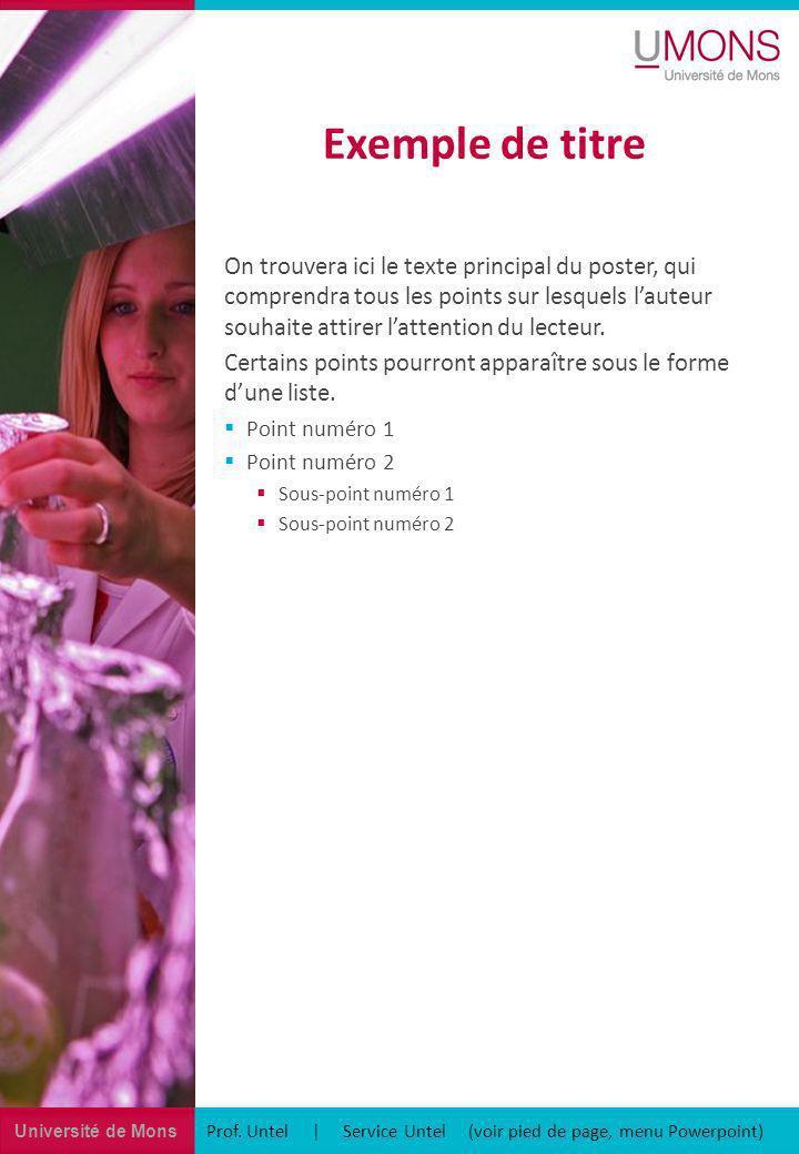 Université de Mons Exemple de titre Prof. Untel | Service Untel (voir pied de page, menu Powerpoint) On trouvera ici le texte principal du poster, qui