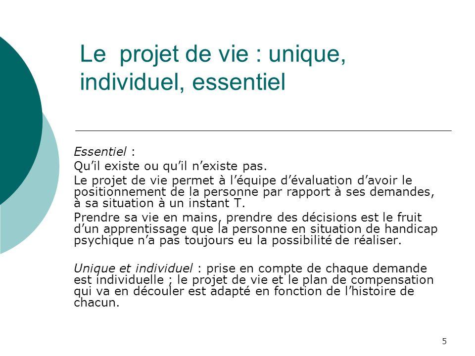5 Le projet de vie : unique, individuel, essentiel Essentiel : Quil existe ou quil nexiste pas. Le projet de vie permet à léquipe dévaluation davoir l