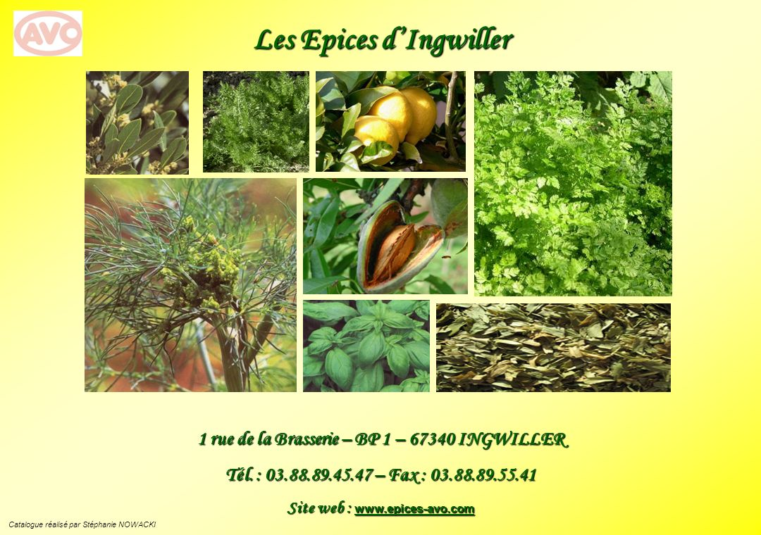 Les Epices dIngwiller 1 rue de la Brasserie – BP 1 – 67340 INGWILLER Tél. : 03.88.89.45.47 – Fax : 03.88.89.55.41 Site web : www.epices-avo.com Catalo