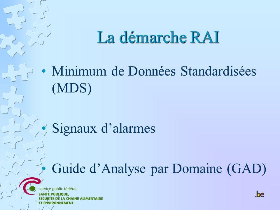 La démarche RAI Minimum de Données Standardisées (MDS) Signaux dalarmes Guide dAnalyse par Domaine (GAD)