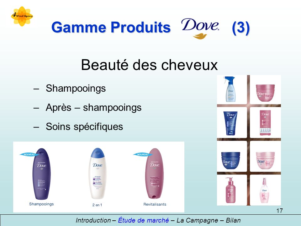 17 Beauté des cheveux – Shampooings – Après – shampooings – Soins spécifiques Étude de marché Introduction – Étude de marché – La Campagne – Bilan Gamme Produits(3)