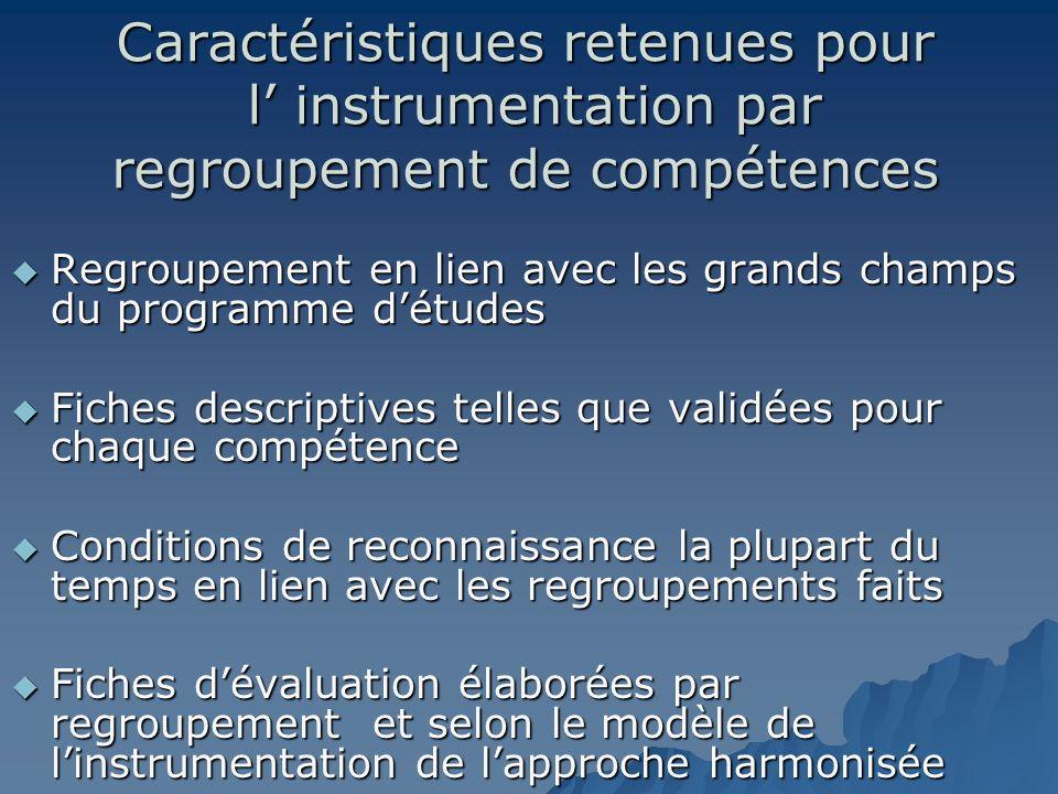 Caractéristiques retenues pour l instrumentation par regroupement de compétences Regroupement en lien avec les grands champs du programme détudes Regr