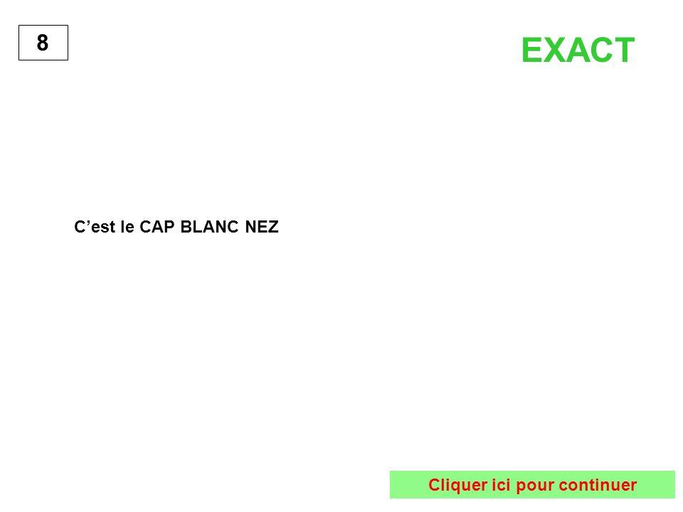 Cest le CAP BLANC NEZ 8 EXACT Cliquer ici pour continuer
