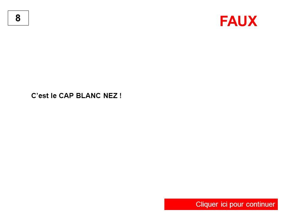 Cest le CAP BLANC NEZ ! 8 FAUX Cliquer ici pour continuer