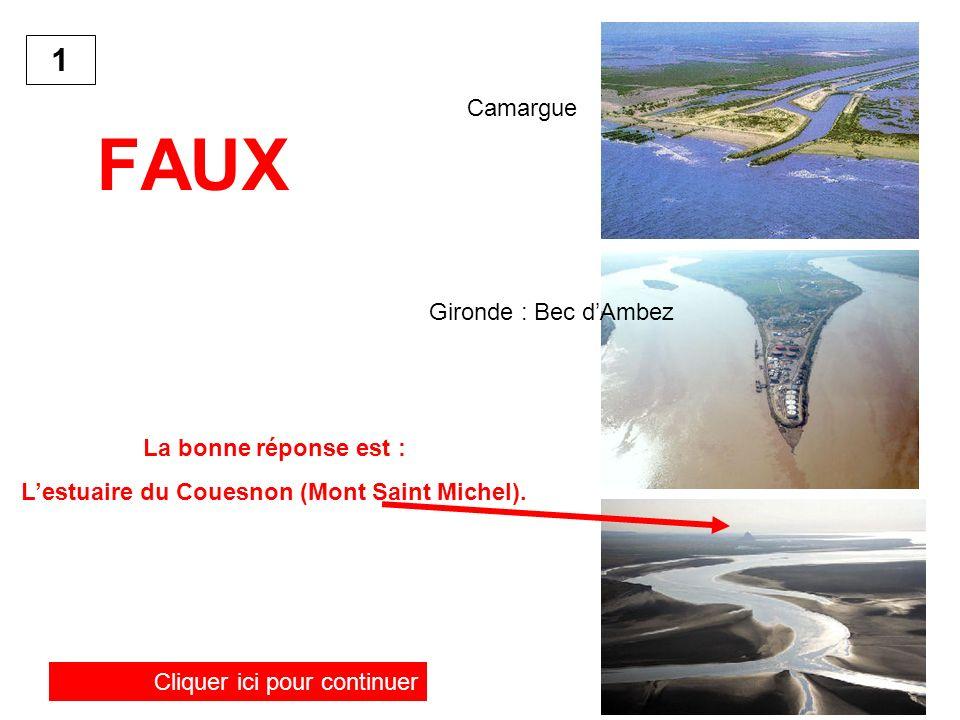 FAUX La bonne réponse est : Lestuaire du Couesnon (Mont Saint Michel). Cliquer ici pour continuer 1 Camargue Gironde : Bec dAmbez