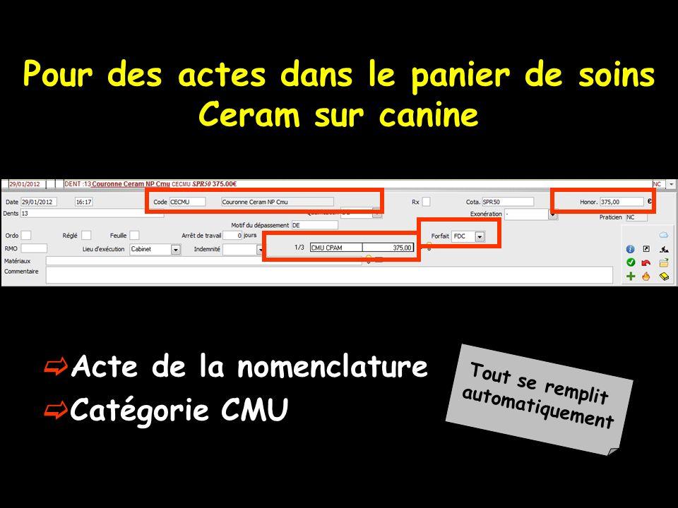 Pour des actes dans le panier de soins Ceram sur canine Acte de la nomenclature Catégorie CMU Tout se remplit automatiquement