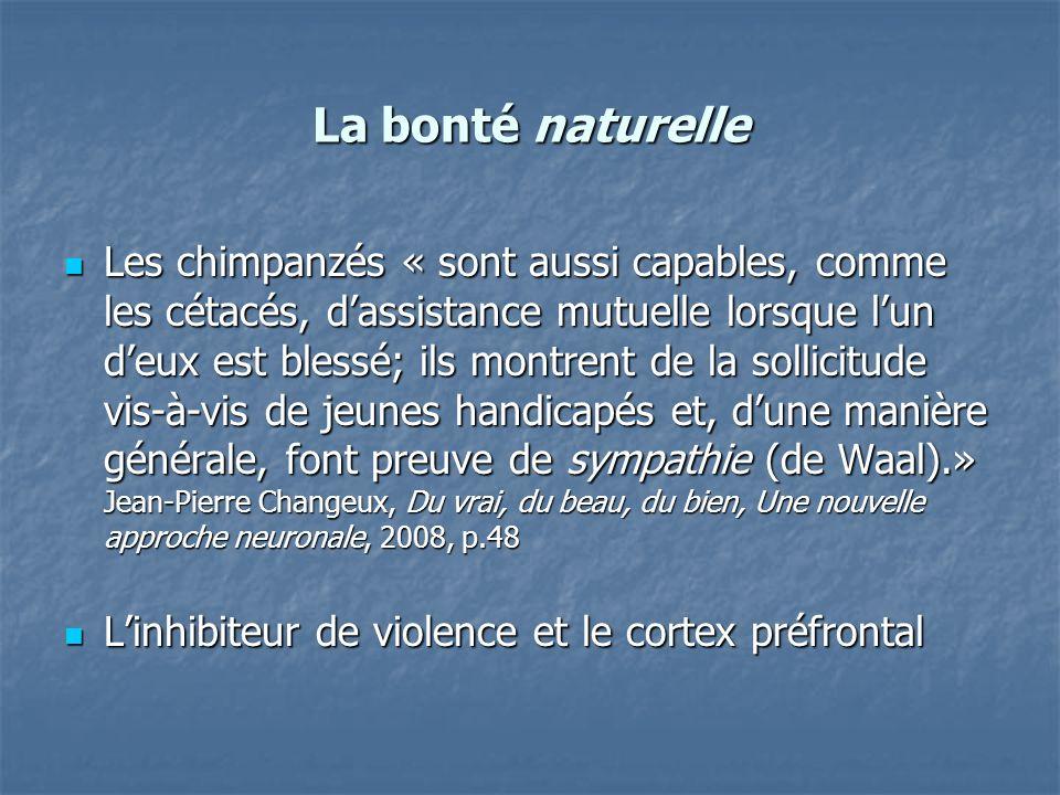 La bonté naturelle Les chimpanzés « sont aussi capables, comme les cétacés, dassistance mutuelle lorsque lun deux est blessé; ils montrent de la solli