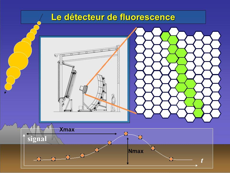 Le détecteur de fluorescence t signal Xmax Nmax
