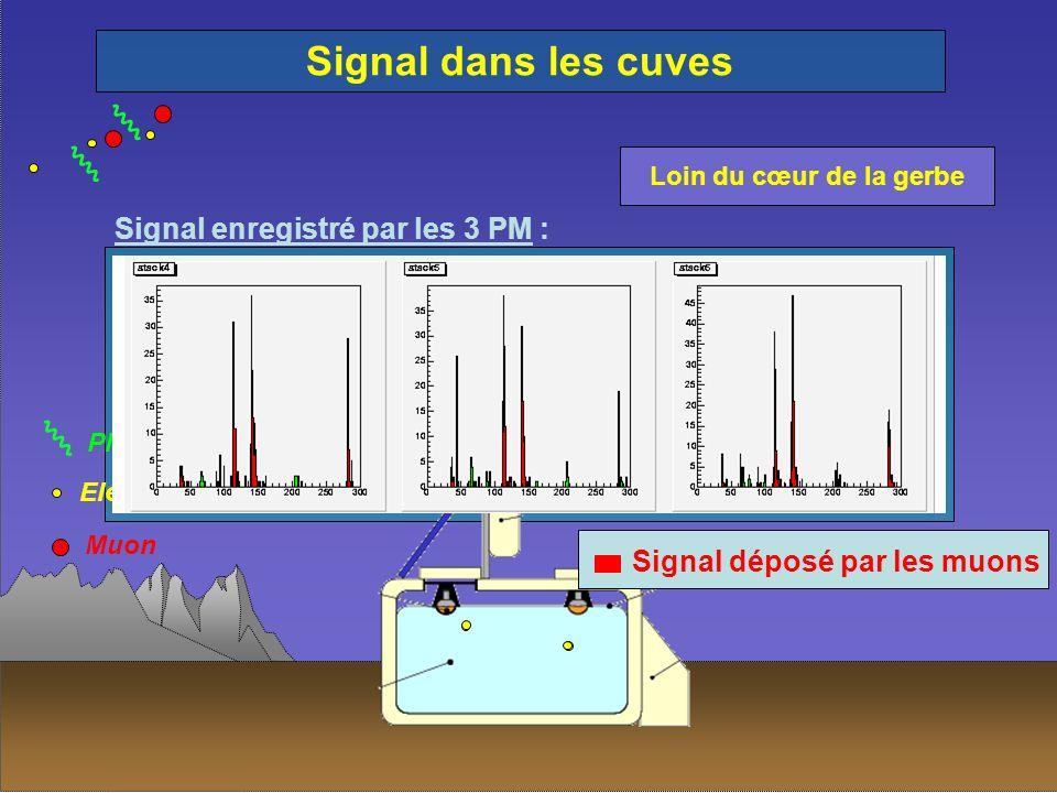 Photon Electron Muon Signal dans les cuves Signal enregistré par les 3 PM : Signal déposé par les muons Loin du cœur de la gerbe