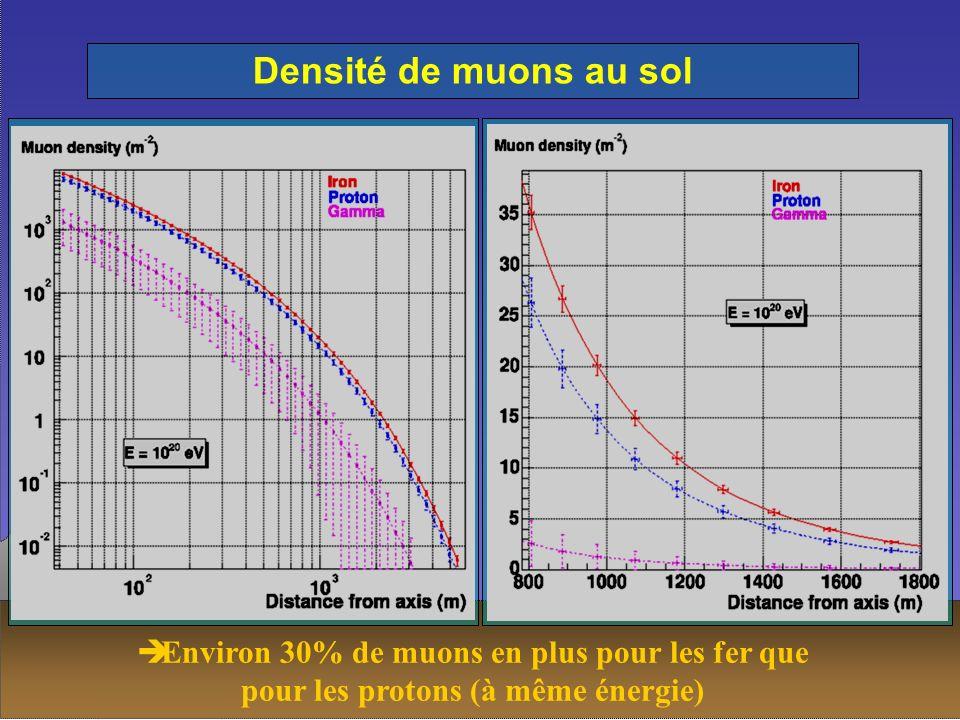 Densité de muons au sol Environ 30% de muons en plus pour les fer que pour les protons (à même énergie)