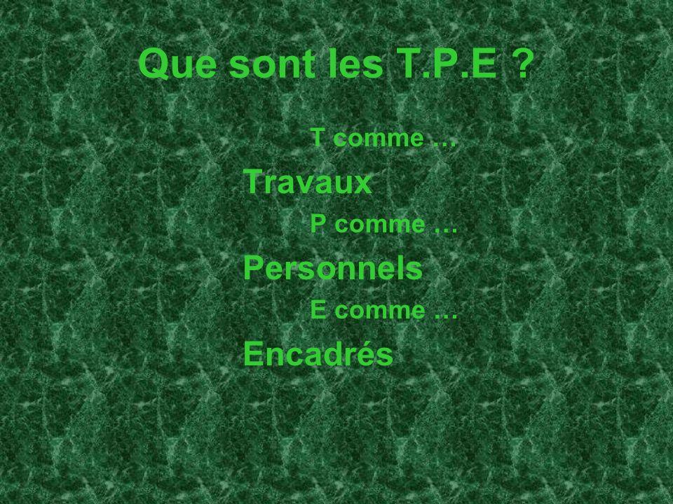 Que sont les T.P.E ? T comme … Travaux P comme … Personnels E comme … Encadrés