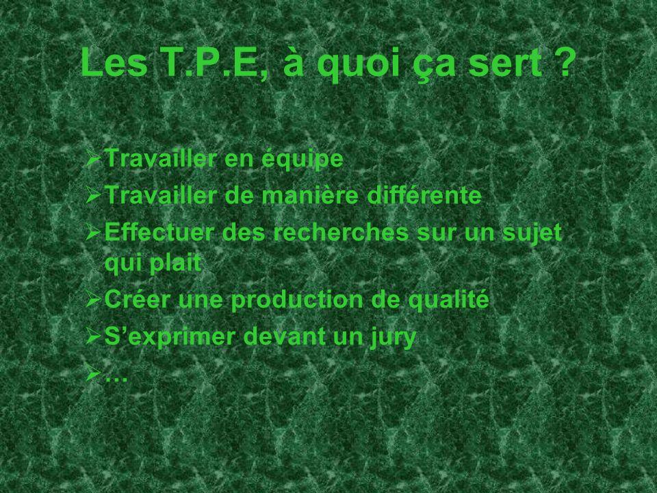 Les T.P.E, à quoi ça sert ? Travailler en équipe Travailler de manière différente Effectuer des recherches sur un sujet qui plait Créer une production