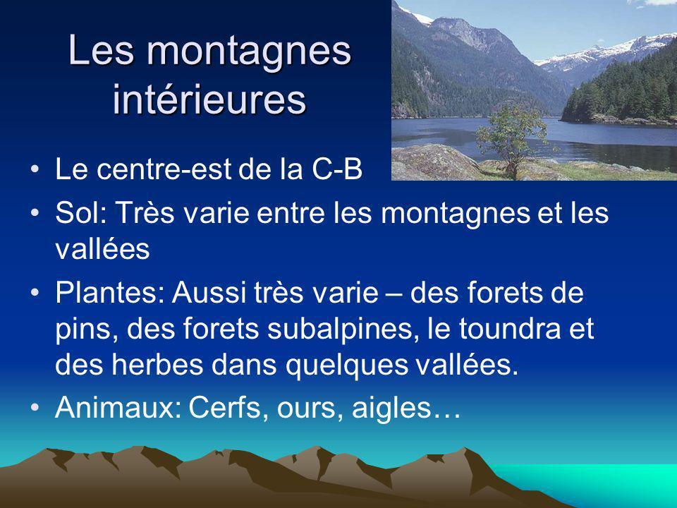 Les montagnes intérieures Le centre-est de la C-B Sol: Très varie entre les montagnes et les vallées Plantes: Aussi très varie – des forets de pins, d