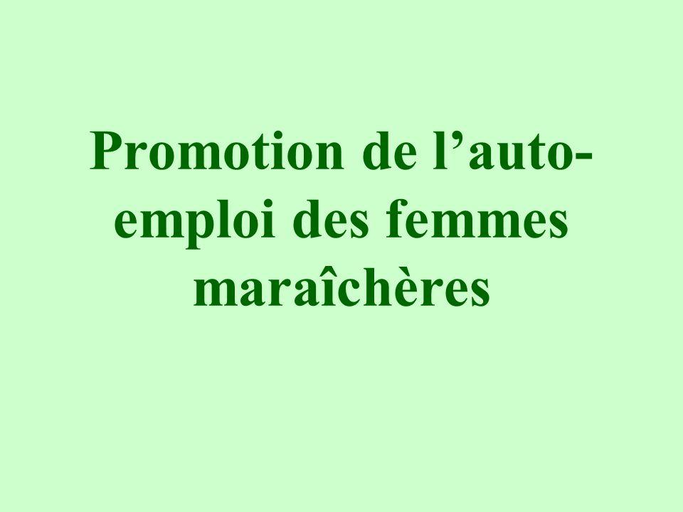 Promotion de lauto- emploi des femmes maraîchères