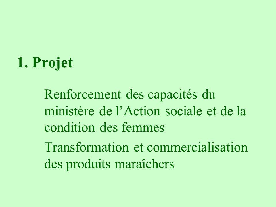 1. Projet Renforcement des capacités du ministère de lAction sociale et de la condition des femmes Transformation et commercialisation des produits ma