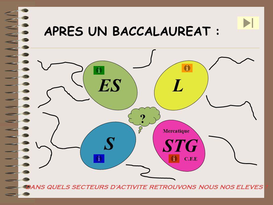 APRES UN BACCALAUREAT : ES STG S L ? Mercatique C.F.E DANS QUELS SECTEURS DACTIVITE RETROUVONS NOUS NOS ELEVES ?