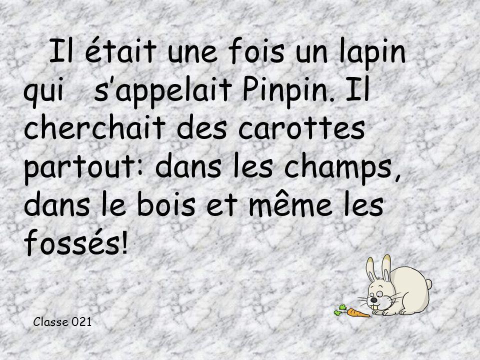 Il était une fois un lapin qui sappelait Pinpin.