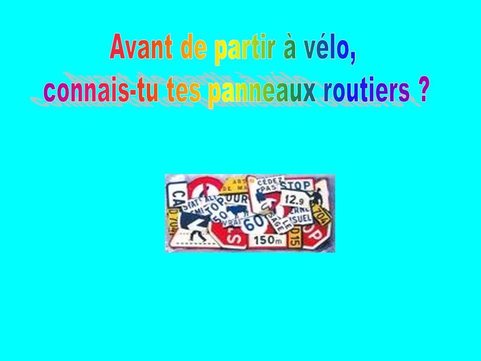 11) Tu rencontres ce panneau : Lorsque tu entres dans le village de Champeix.