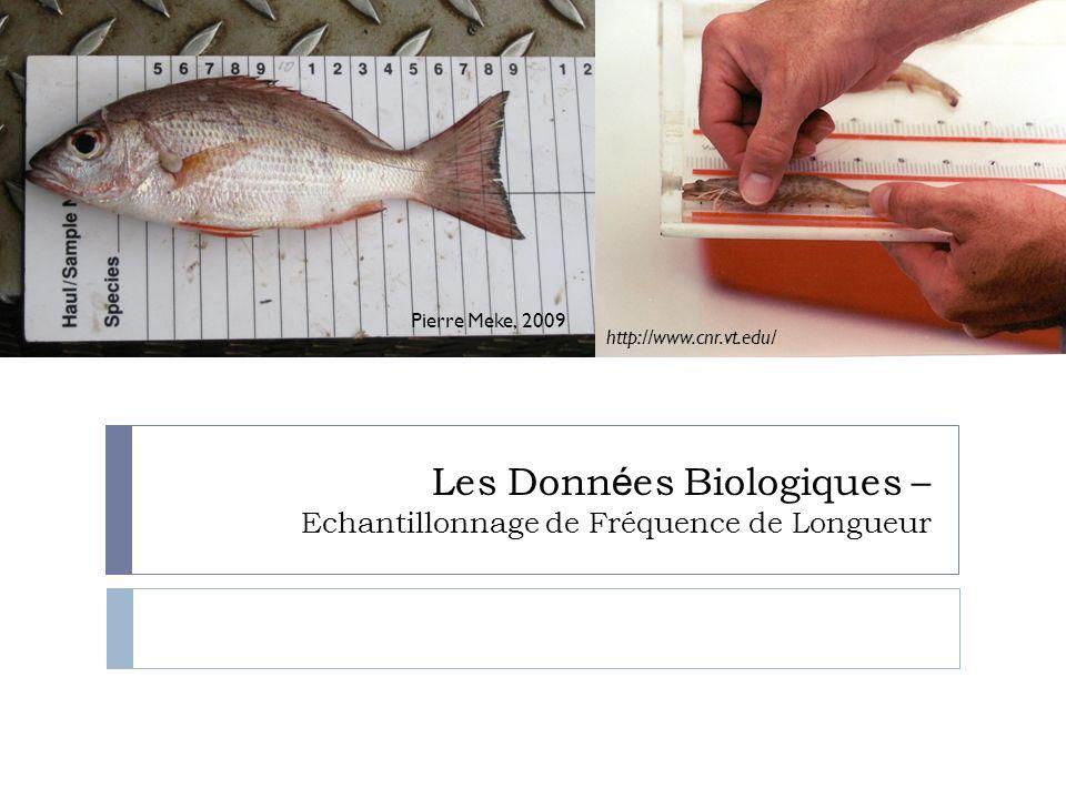 Pierre Meke, 2009 Les Donn é es Biologiques – Echantillonnage de Fréquence de Longueur http://www.cnr.vt.edu/