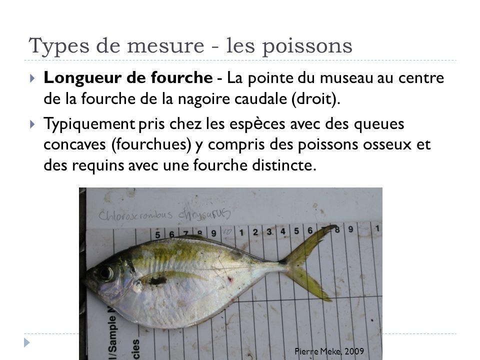 Types de mesure - les poissons Longueur de fourche - La pointe du museau au centre de la fourche de la nagoire caudale (droit). Typiquement pris chez