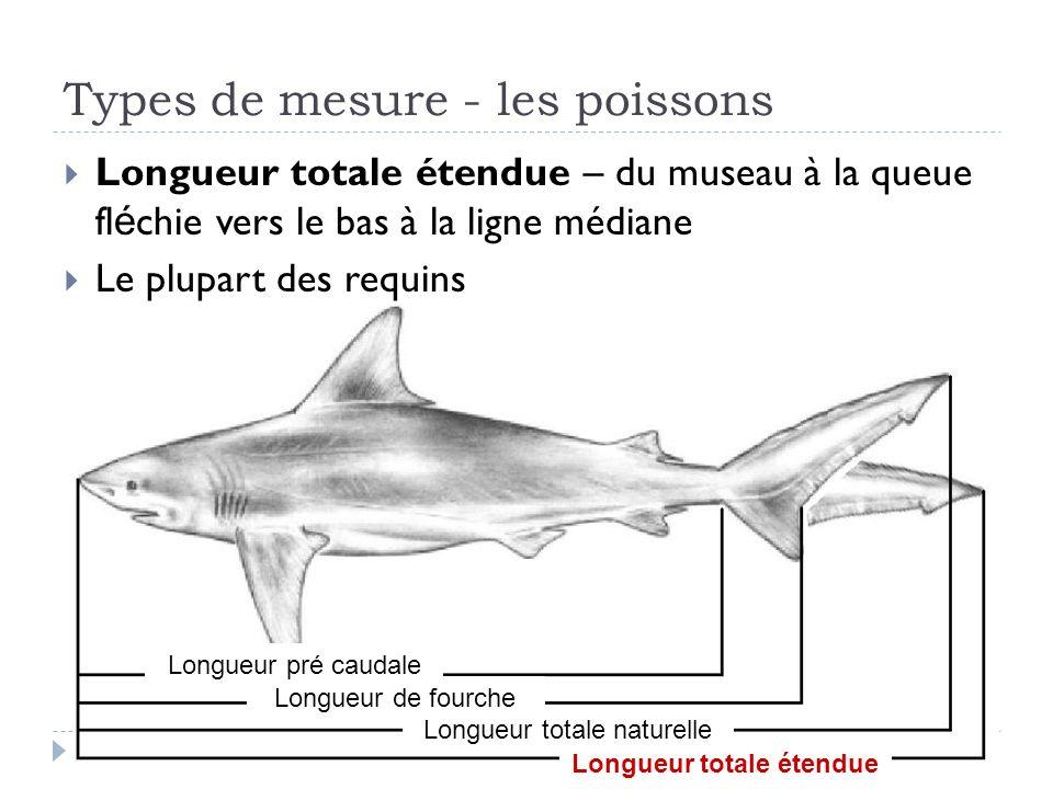 Types de mesure - les poissons Longueur totale étendue – du museau à la queue fl é chie vers le bas à la ligne médiane Le plupart des requins Longueur