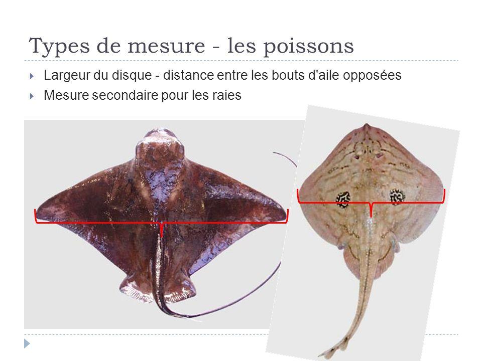 Largeur du disque - distance entre les bouts d'aile opposées Mesure secondaire pour les raies