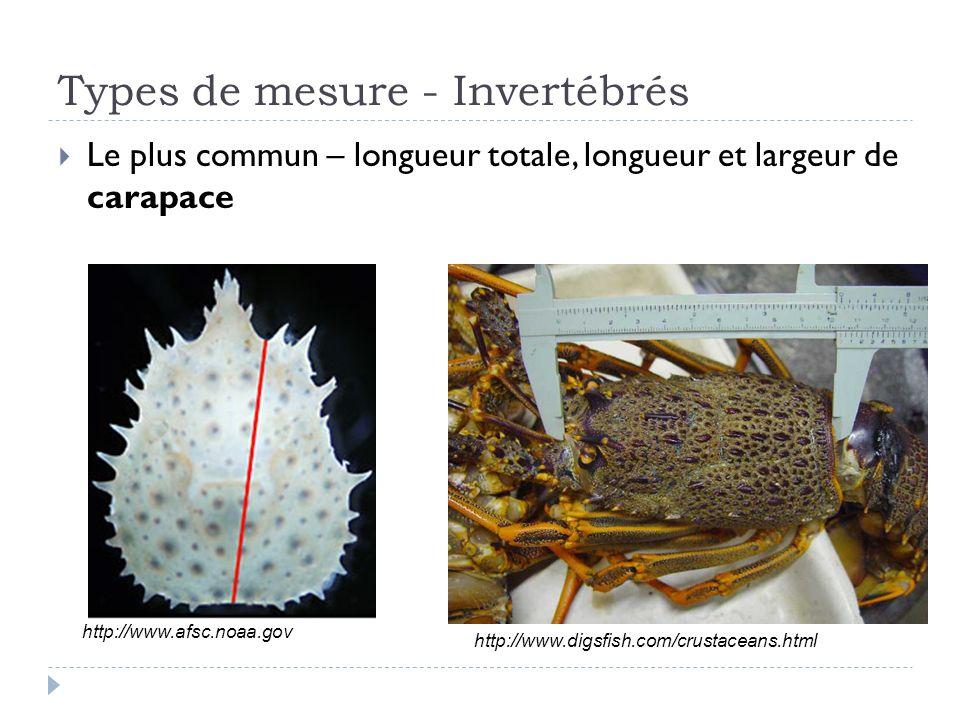 Types de mesure - Invertébrés Le plus commun – longueur totale, longueur et largeur de carapace http://www.digsfish.com/crustaceans.html http://www.afsc.noaa.gov