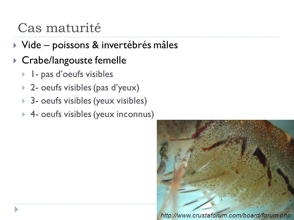 Cas maturité Vide – poissons & invertébrés mâles Crabe/langouste femelle 1- pas doeufs visibles 2- oeufs visibles (pas dyeux) 3- oeufs visibles (yeux visibles) 4- oeufs visibles (yeux inconnus) http://www.crustaforum.com/board/forum.php