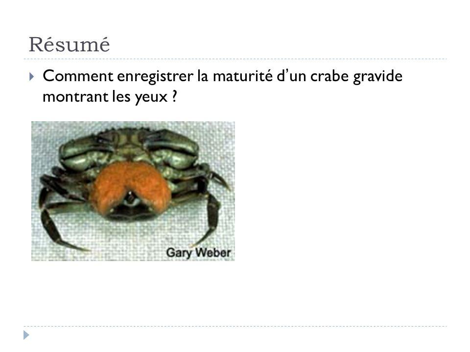 Résumé Comment enregistrer la maturité d un crabe gravide montrant les yeux ?