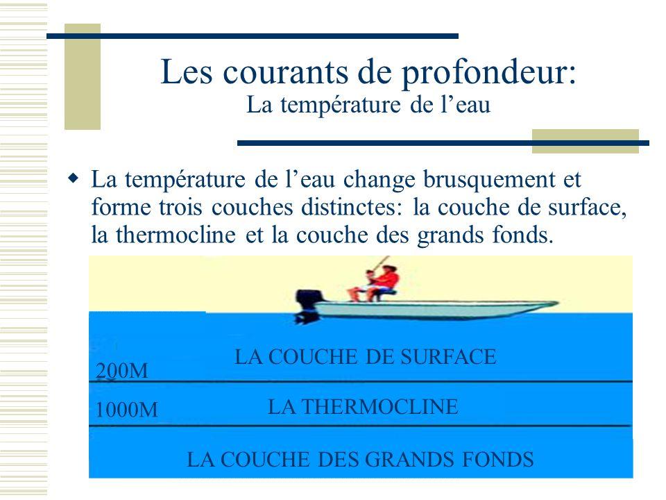 Les courants de profondeur: La température de leau La température de leau change brusquement et forme trois couches distinctes: la couche de surface, la thermocline et la couche des grands fonds.