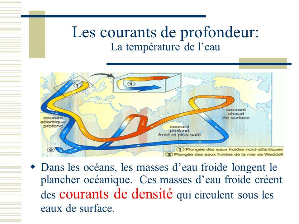 Les courants de profondeur: La température de leau Dans les océans, les masses deau froide longent le plancher océanique. Ces masses deau froide créen