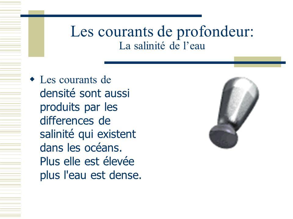 Les courants de profondeur: La salinité de leau Les courants de densité sont aussi produits par les differences de salinité qui existent dans les océans.