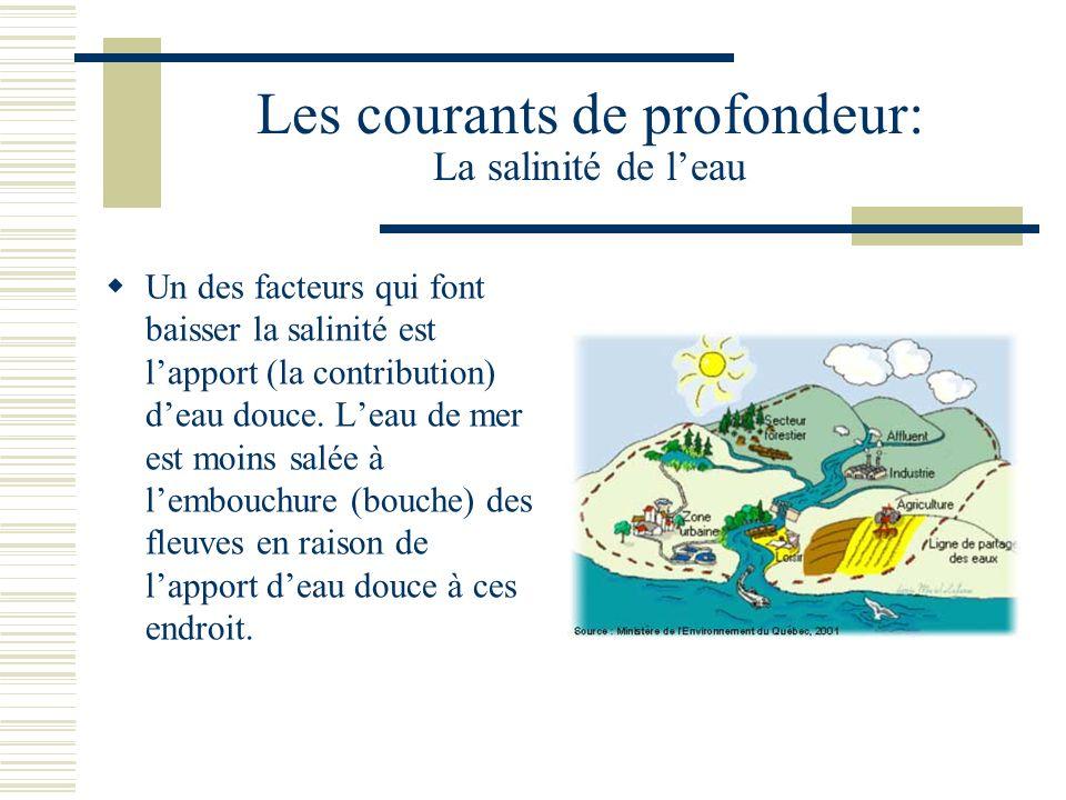 Les courants de profondeur: La salinité de leau Un des facteurs qui font baisser la salinité est lapport (la contribution) deau douce. Leau de mer est