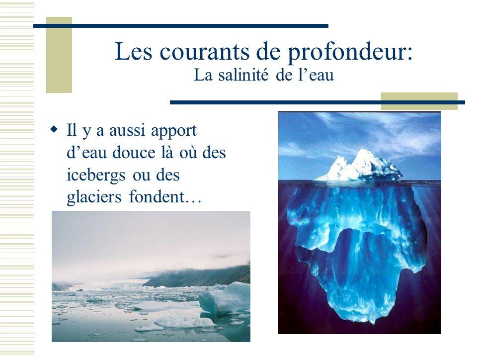 Les courants de profondeur: La salinité de leau Il y a aussi apport deau douce là où des icebergs ou des glaciers fondent…